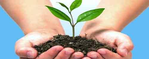 Imagen-5 de junio: Dia Mundial del Medio Ambiente